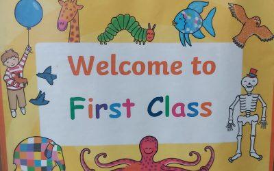 1st Class- Ms. Flanagan